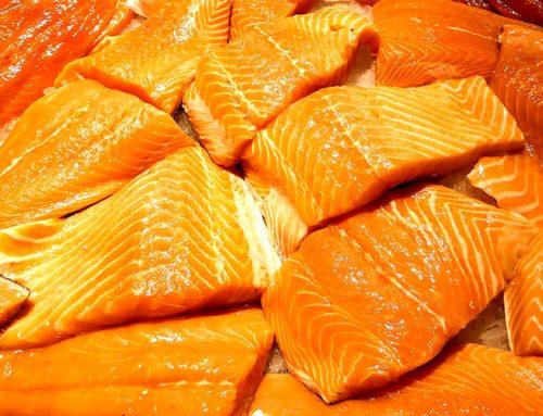 Especialistas comentam diferenças entre salmão selvagem e de cativeiro