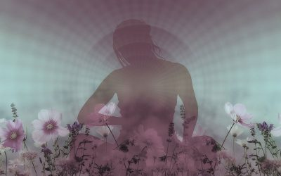 curso de meditação