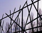 cerca de campo de concentração