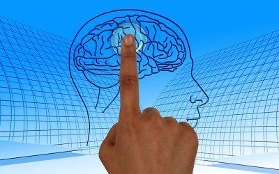 mente conectada
